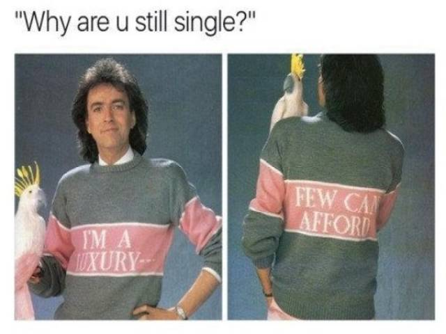 Funny Meme About Single People