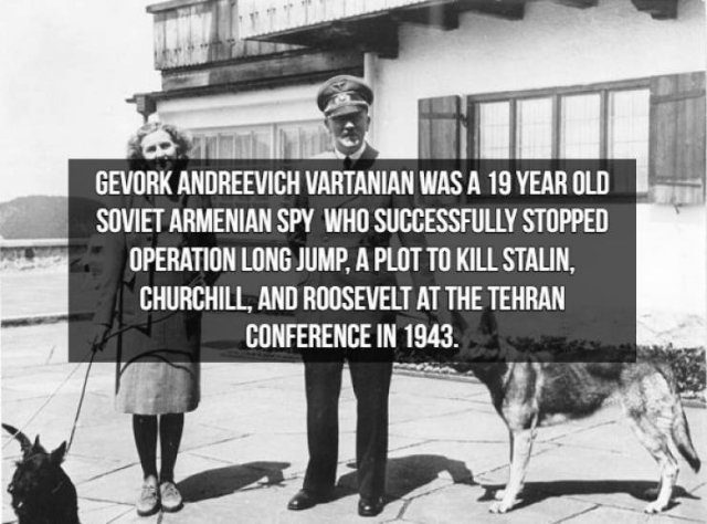 Spy Fact
