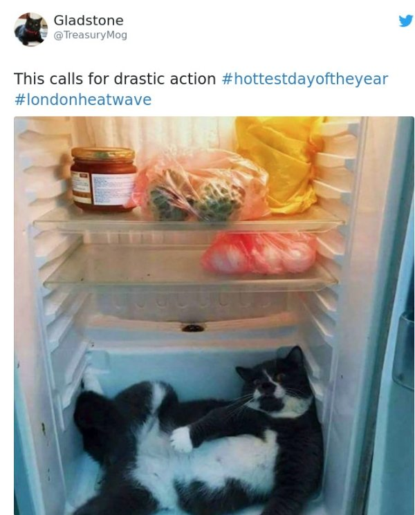 When Weather Is Too Hot