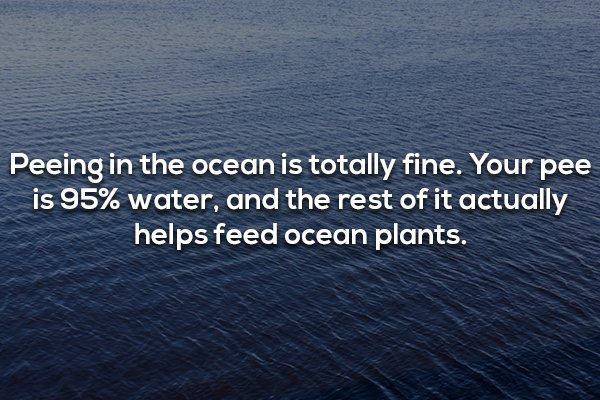 Ocean Fact