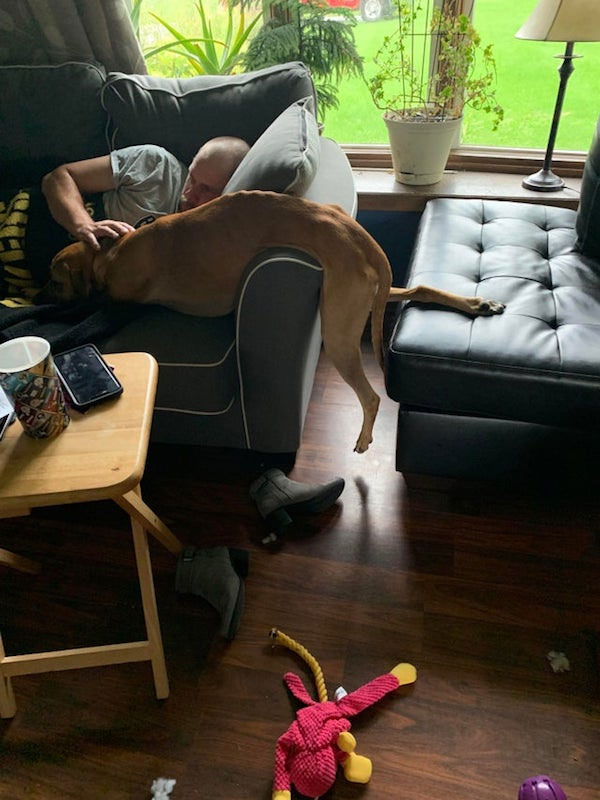 Dog.exe Is Not Working