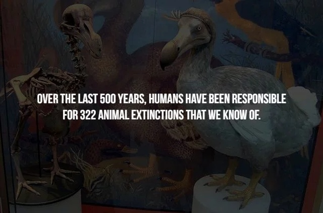 Facts This Is Little Bit Creepy
