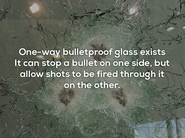 Useless Fact