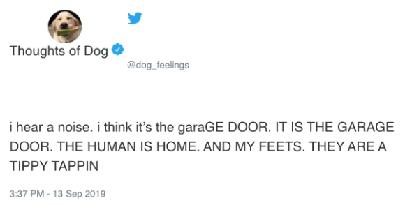 Dogs Thought