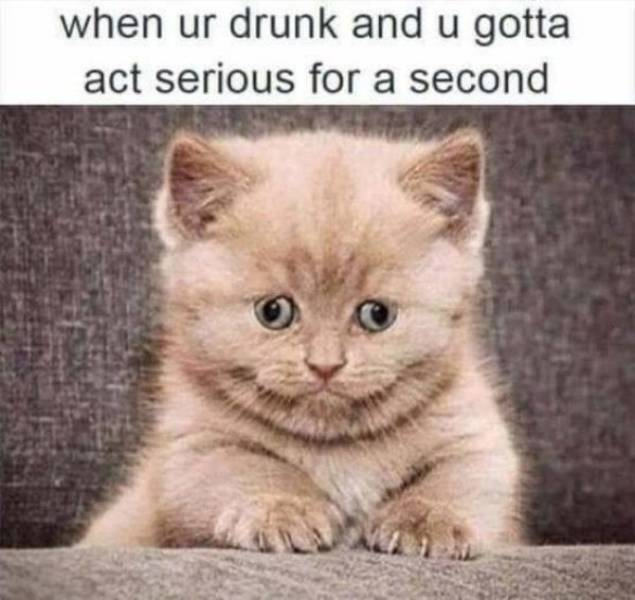 Drunk Funny Picture