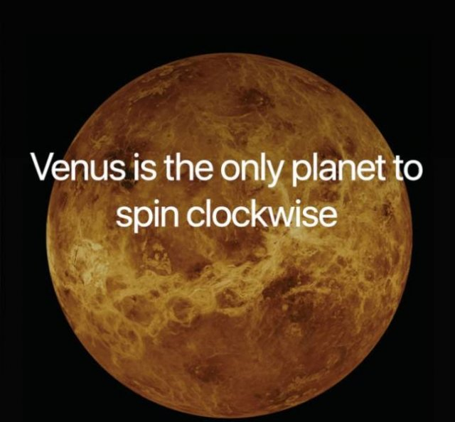 Interesting Science Fact