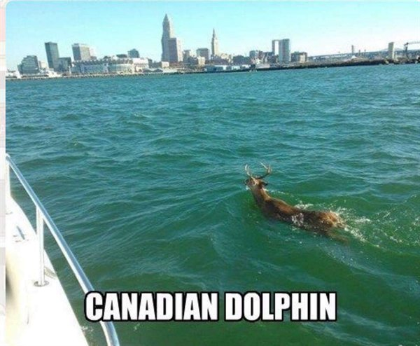 Only In Canada Hilarious Photo