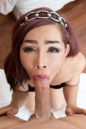 Asian shemale Sol takes a man's big dick deep in her asshole POV style