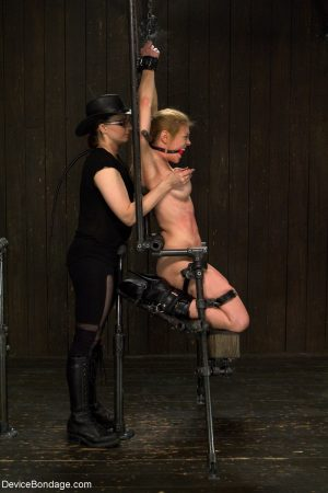 Big boobed MILF Dee Williams gets her snatch toyed while tied up