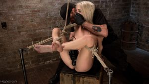Hogtied Cadence Lux, The Pope