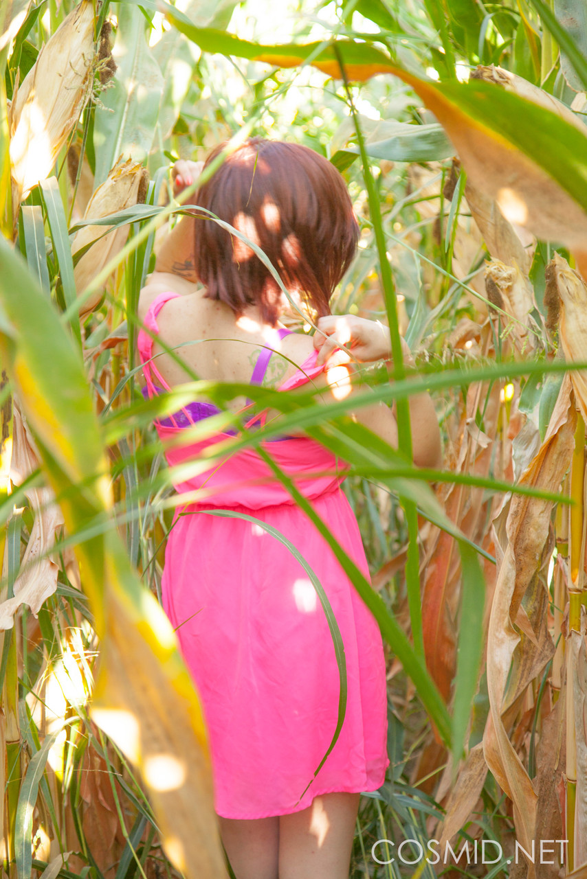 Big titted amateur Chelsea Bell disrobes in a corn field to reveal huge melons